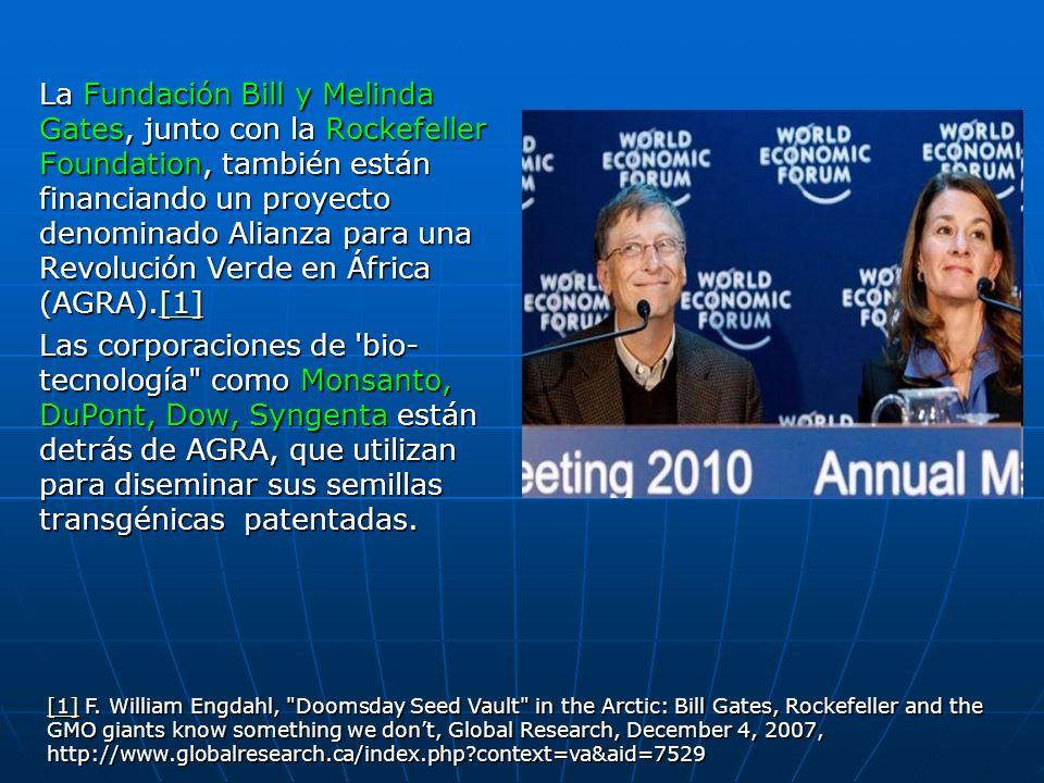 La Fundación Bill y Melinda Gates, junto con la Rockefeller Foundation, también están financiando un proyecto denominado Alianza para una Revolución Verde en África (AGRA).[1]